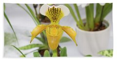 Bath Towel featuring the photograph Yellow Orchid Closeup by Hans Engbers