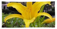 Bath Towel featuring the photograph Yellow Renaissance Lily by Karen J Shine
