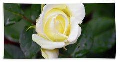 Yellow Rose 1 Hand Towel