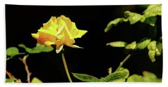 Yellow Rose  Bath Towel by Mike Murdock