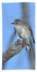 Yellow-rumped Warbler Itch Bath Towel by Alan Lenk