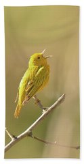 Yellow Warbler Song Bath Towel by Alan Lenk