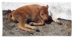 Yellowstone Bison Calf  Hand Towel