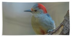 Young Red Bellied Woodpecker Bath Towel