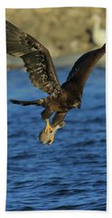 Hand Towel featuring the photograph Young Bald Eagle With Fish by Coby Cooper