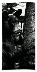 Young Black Bear In Tree  Hand Towel