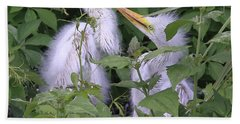 Young Egrets Bath Towel