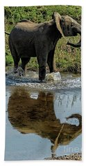 Young Elephant Playing In A Puddle Hand Towel