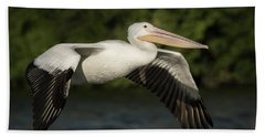 Young Pelican 2016-1 Bath Towel by Thomas Young