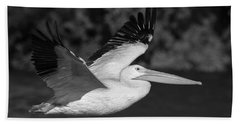 Young Pelican 2016-3 Bath Towel by Thomas Young