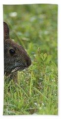 Young Rabbit Dining Bath Towel