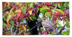 Hand Towel featuring the photograph Young Robin In The Berries by Kerri Farley