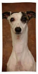 Young Whippet Hand Towel by Greg Mimbs