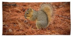 Yum Yum Nuts Wildlife Photography By Kaylyn Franks     Bath Towel