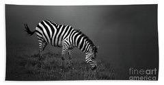 Zebra Hand Towel by Charuhas Images