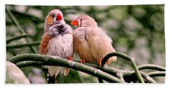 Bath Towel featuring the photograph Zebra Finch Colloquy by Rona Black