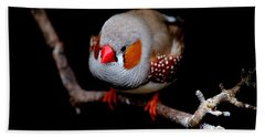 Zebra Finch Hand Towel