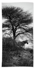 Hand Towel featuring the photograph Zebra On A Hill  by Ernie Echols
