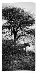 Bath Towel featuring the photograph Zebra On A Hill  by Ernie Echols