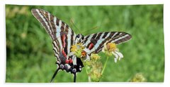Zebra Swallowtail And Ladybug Hand Towel