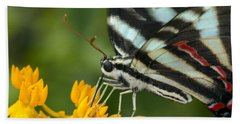 Zebra Swallowtail Drinking On The Fly Bath Towel