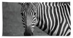 Zebra Hand Towel by Trace Kittrell
