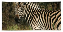 Zebra Watching Bath Towel