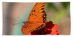 Zinnia With Butterfly 2669 Hand Towel
