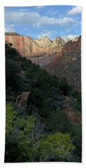 Zion National Park 20 Bath Towel by Jeff Brunton