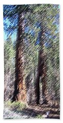 010219 Red Woods California Hand Towel
