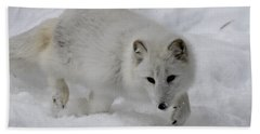 Artic Fox Hand Towel