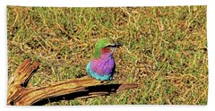 Bird - Lilac-breasted Roller Hand Towel