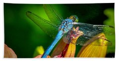 Blue Dragonfly Hand Towel