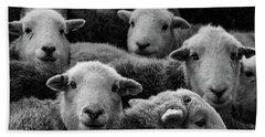 Flock Of Herdwicks Bath Towel