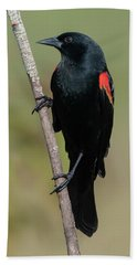 Red-winged Blackbird Hand Towel