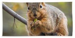Snacking Squirrel Bath Towel