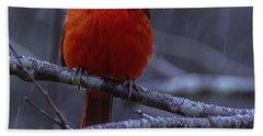 The Curious Cardinal  Bath Towel