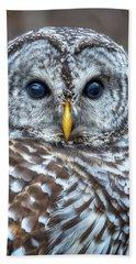 Barred Owl Bath Towel