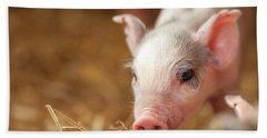 This Little Piggy Hand Towel