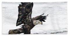 Young Bald Eagle Bath Towel