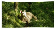 20/06/14  Keswick. Lamb In The Woods. Hand Towel