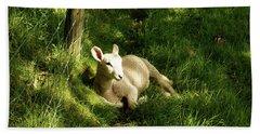 20/06/14  Keswick. Lamb In The Woods. Bath Towel
