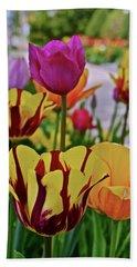 2019 Acewood Tulips 1 Hand Towel