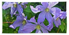 2019 June At The Gardens Prince Charles Clematis Bath Towel