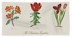 19th Century Botanical Illustrations Of Flowers From The Botanic Garden By Benjamin Maund Hand Towel