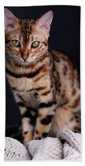 Bengal Cat Portrait Hand Towel
