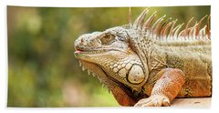 Green Iguana Bath Towel