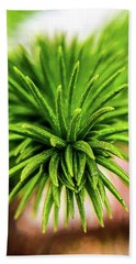 Green Spines Hand Towel