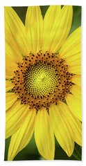 A Perfect Sunflower Hand Towel