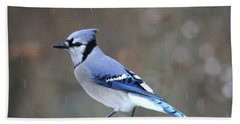 A Snowy Day With Blue Jay Bath Towel